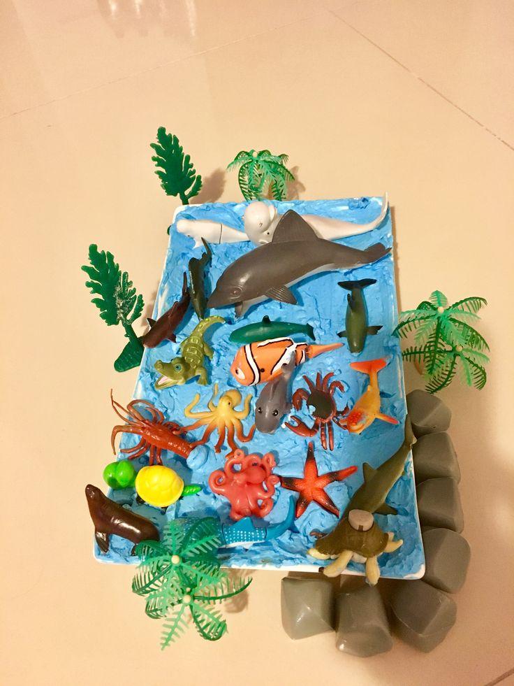 Montessori duyu havuzu  Canlıların yaşam alanları  Çiğdem öğretmen