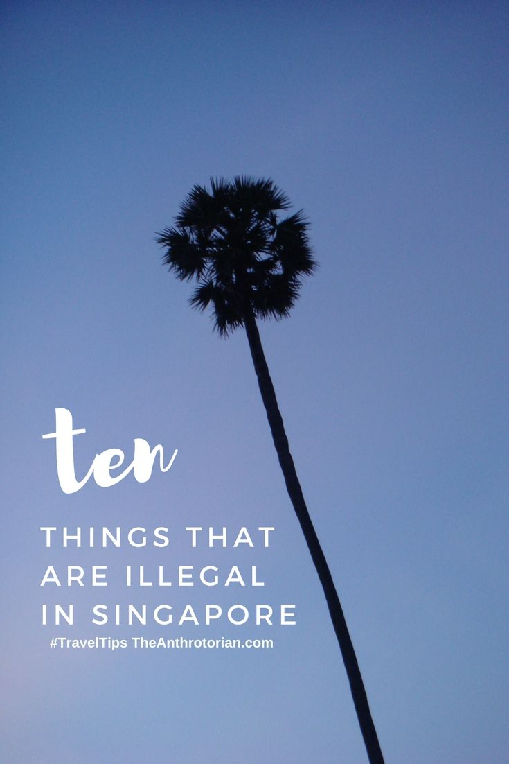 Ten Normal Things That are Illegal in Singapore, local laws, arrested in Asia, can you chew gum in Singapore, travel tips, adventure tips, Asia travel