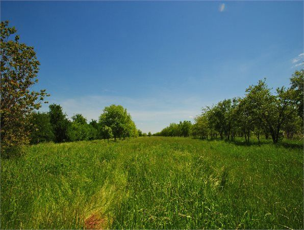 Seagoville, Dallas County, Texas land for sale - 203 acres at LandWatch.com
