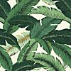 SWAYING PALMS ALOE - Swaying Palms - Newest Fabric Collections - Fabric - Calico Corners