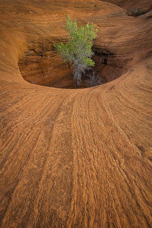 The Castaway - Grand Staircase-Escalante National Monument, Utah....ugh, why didn't we see this while we were there!? Oh well, just means we MUST go back!