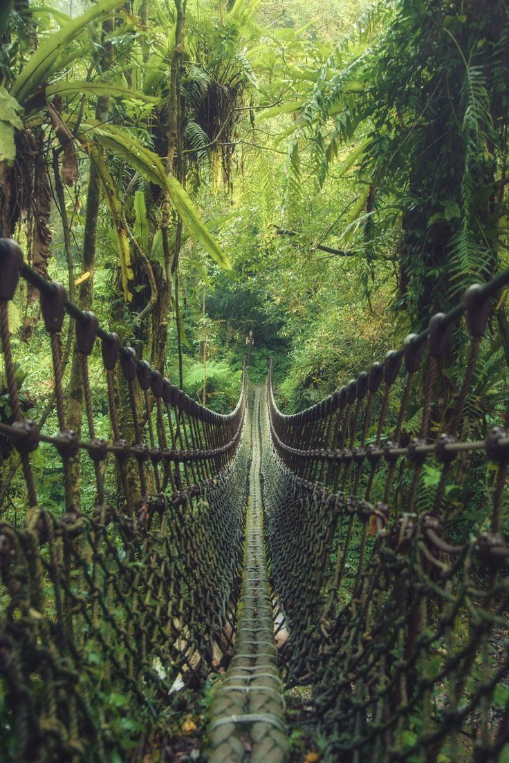 Can't wait to be here. I even got butterflies in my tummy thinking about it!! Rope Bridge in Taiwan