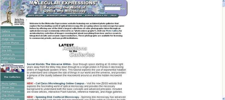Molecular Expressions es un portal de fotografías en color tomadas mediante un microscopio óptico.