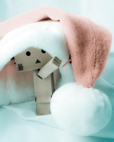 Danbo at Christmas