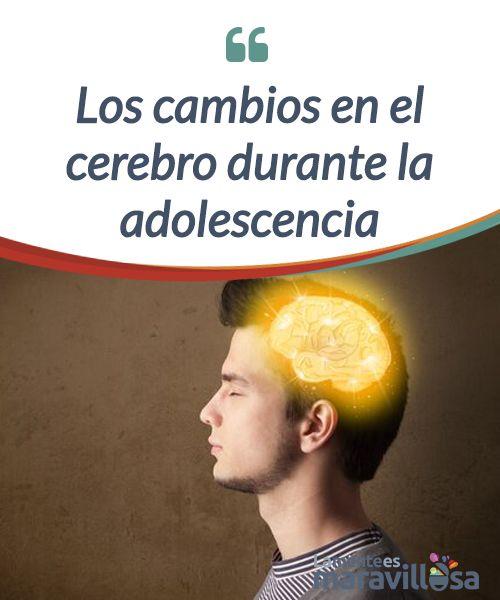 Los cambios en el cerebro durante la adolescencia   En la #adolescencia surgen muchos cambios a nivel #cerebral y la #maduración de éste, lo que repercute en la conducta y las emociones de los adolescentes.  #Psicología