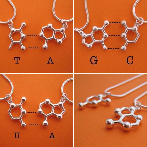 DNA base pair friendship necklaces!! Totally want these!!