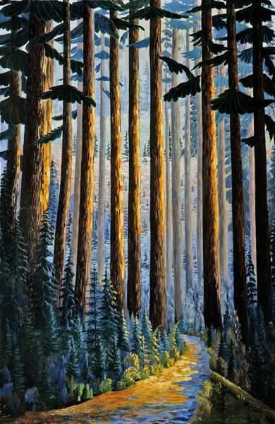 Donald Flather - Cathedral Grove