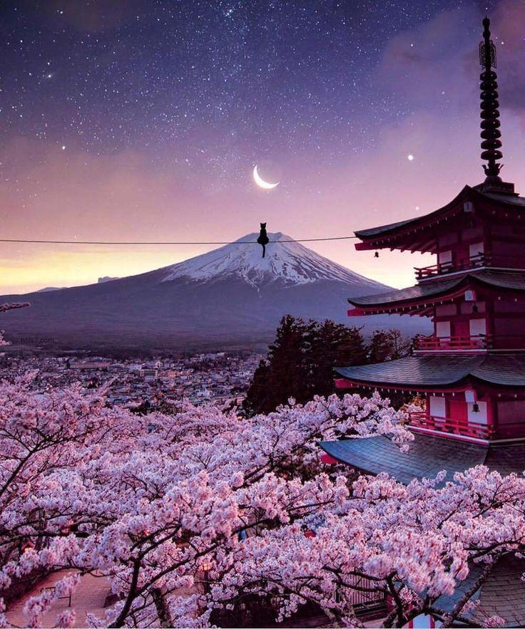 Cherry Blossoms View In Japan Japan Landscape Cherry Blossom Japan Japan Photo Autumn cherry blossom wallpaper