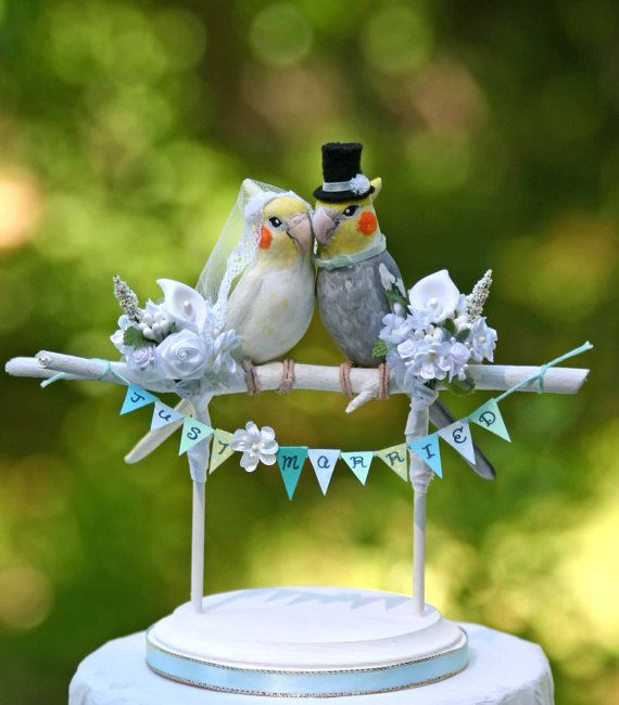 love birds wedding cake 81 best images about i miss my cockatiel on 16945