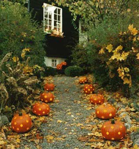 autumn...pumpkin path: Polka Dots, Halloween Decor, Idea, Fall Decor, Walkways, Gardens Paths, Pumpkins, Halloween Pumpkin, Pathways