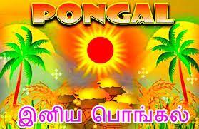 Pongal 2016,Pongal significance,Thai pongal,Pongal 2016 date,Pongal wishes,Pongal greetings,How is pongal celebrated,Pongal in tamil nadu,Tamil nadu pongal,Jallikattu ban,Makar Sankranti 2016,Why is sankranti celebrated,Harvest festivals in india,INDIAN FESTIVALS,Pongal dish,How to prepare pongal dish,Pongal recipe,Pongal date 2016