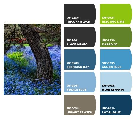 Color Combinations With Blue 115 best blue-green colour combination images on pinterest | blue