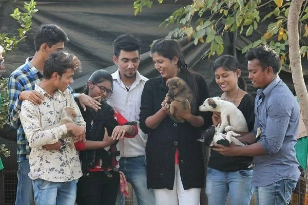 Street dogs: Youngsters help strays find safe homes in the rainy season | Nagpur News - Times of India http://timesofindia.indiatimes.com/city/nagpur/youngsters-help-strays-in-the-rainy-season/articleshow/59422087.cms?utm_campaign=crowdfire&utm_content=crowdfire&utm_medium=social&utm_source=pinterest