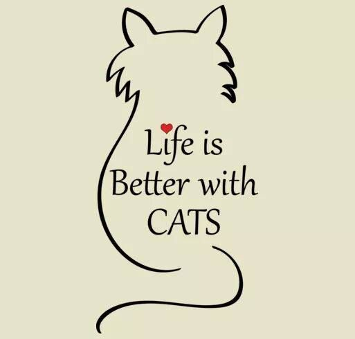 Life is better with cats. It really is. Happy Caturday!!!