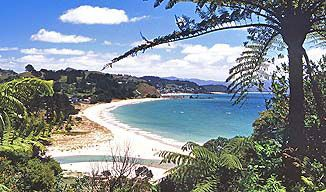 Whitianga is just two and a half or three hours coastal drive from Auckland, Hamilton or Tauranga. Description from coromandelfun.co.nz. I searched for this on bing.com/images