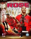 Chicago Bulls - Derrick Rose 2010-11 NBA MVP Composite Photo