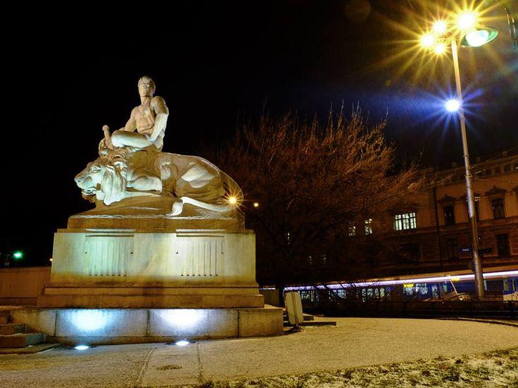 #WrocławNocą  Legenda glosi ze jak bedzie obok przechodzila dziewica to lew zaryczy!!!\