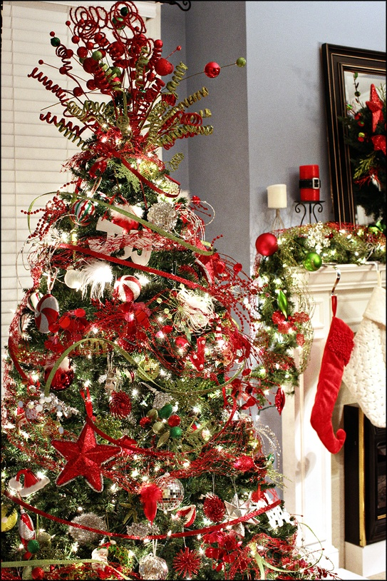 Beautiful Christmas Tree The Most Wonderful Time Of The