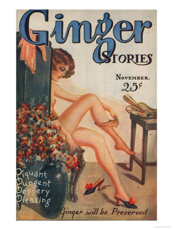 Ginger Stories, Erotica Pulp Fiction Magazine, USA, 1927 Premium Poster: Ginger Stories, Vintage Bathroom, Poster, 1927, Magazines, Erotica Pulp, Pulp Fiction, Usa