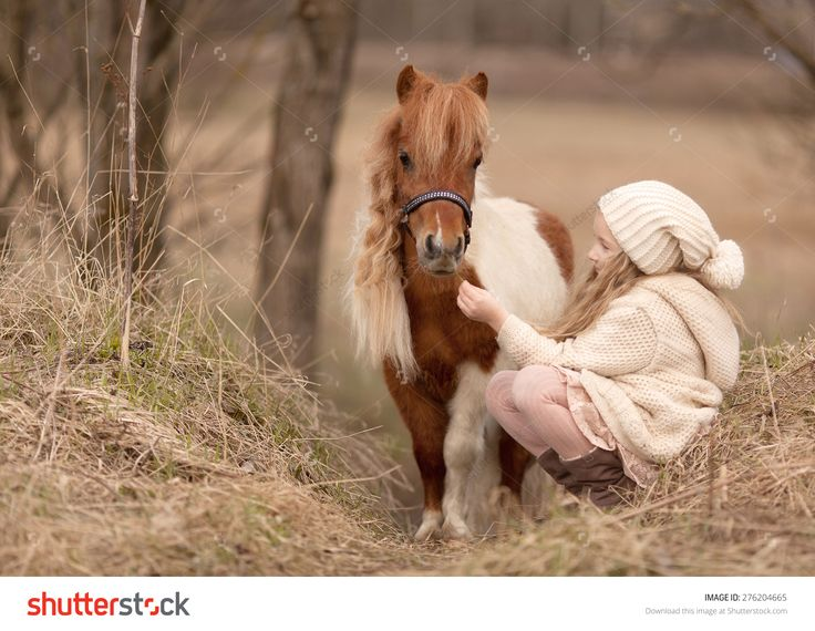 Little Blond Girl With Long Hair In Cream Hat And Coat Is Sitting Near The Little Horse And Feed Her Стоковые фотографии 276204665 : Shutterstock