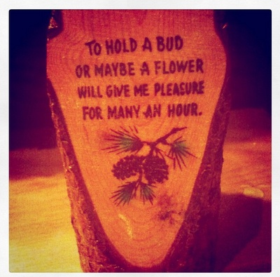 """""""To hold a bud or maybe a flower will give me pleasure for many an hour"""". Via Spark & Thistle"""