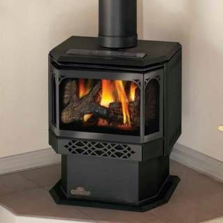 Napoleon GDS28 Gas Stove Direct Vent Stoves