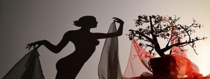 title ''Akina'' sakura tree shadow art ... #shadow #shadowart #light #lightandshadow #shadowartist #greece #greekartist #greekart #shadowtechnique #guernica #picasso #teodosio #teodosiosectioaurea