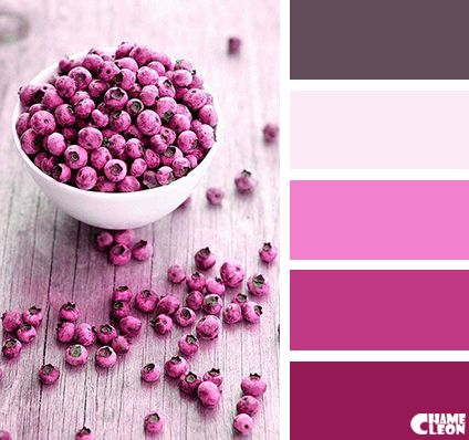 Best Color Theory Images On Pinterest Colors Combination