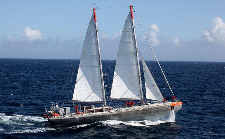 Plancton arctique : Belle moisson du voilier Tara de retour en Bretagne