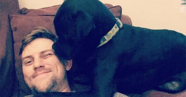 19 Adorable Mutts Who Are Clearly Mankind's Best Friends