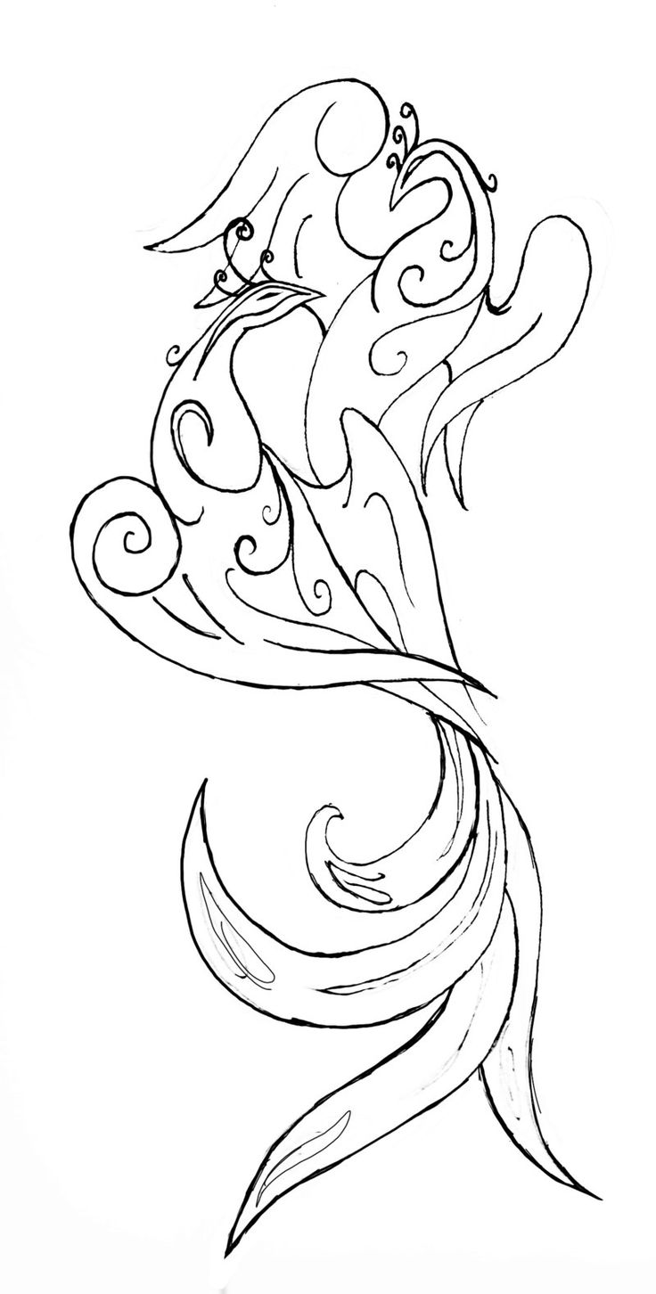 Peacock love  Google Image Result for http://fc05.deviantart.net/fs70/i/2012/115/e/2/peacock_tattoo_by_kymerabjd-d4xiy1s.jpg