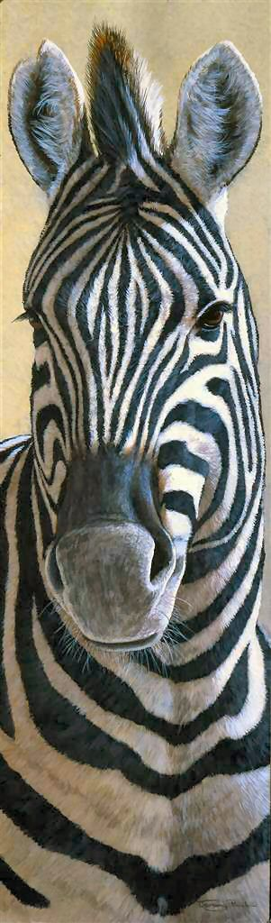 """Zebra"" Gallery-Wrapped Canvas Print 14"" x 48"""