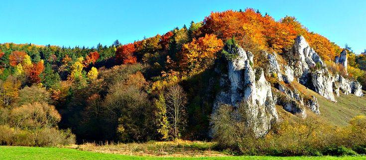 Les Pères Fondateurs, Pologne, Le Parc National