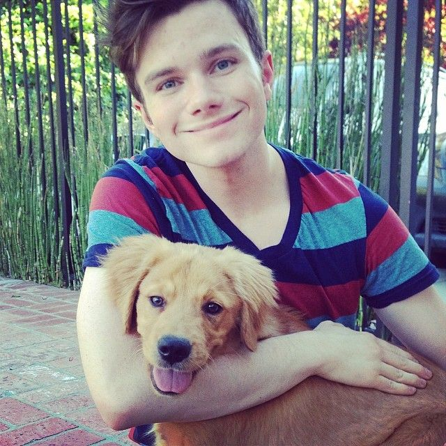 """Chris Colfer: """"I adopted a puppy from the Southern California Golden Retriever Rescue! Meet Cooper!"""""""