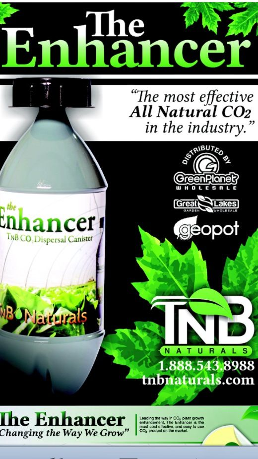 """The Only """"BAG"""" You Need From Your Local Hydroponic Store, Is For The CO2 Enhancer!"""