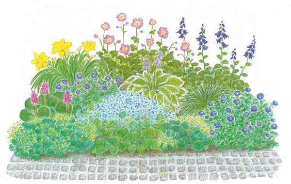 Ber ideen zu schattengartenpflanzen auf pinterest for Beetideen garten