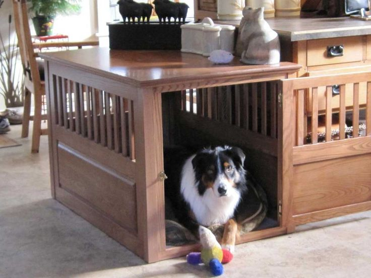 Best-Dog-Furniture-Design-Ideas ~ http://www.lookmyhomes.com/smart-in-choosing-dog-furniture/