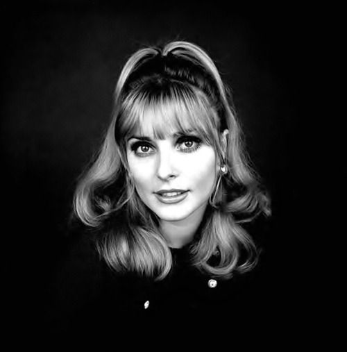 Sharon Tate      Sharon Tate by Jerry Schatzberg, 1967.