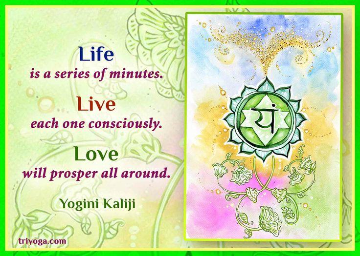 www.triyoga.com www.kriya.triyoga.com