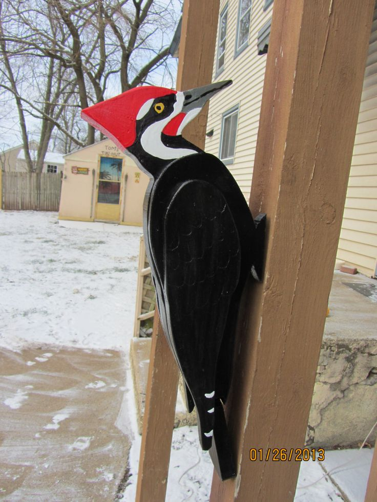 This Is Great I Love It Etsy 3d Giant Pileated