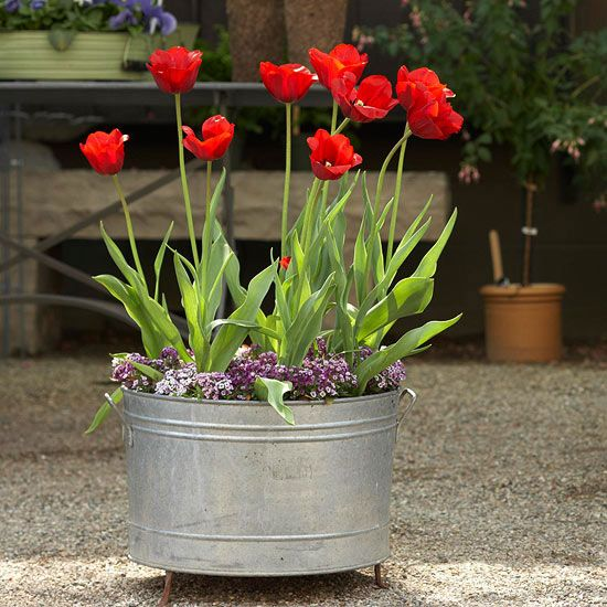 Galvanized Tub-Galvanized steel can work for any garden style -- cottage, country, or even modern and contemporary