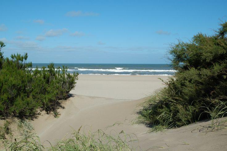 Promociones | Miradores del Bosque Mar de las Pampas, Cabañas en Mar de las Pampas