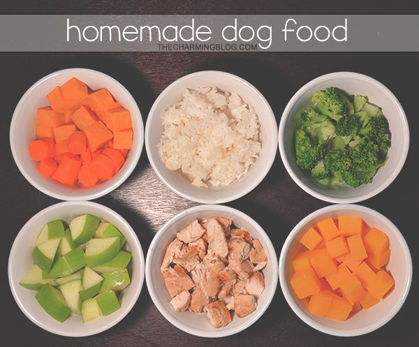 diy homemade dog food recipe 2