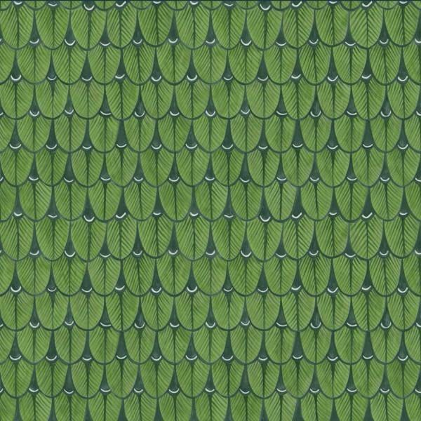 Výsledok vyhľadávania obrázkov pre dopyt narina wallpaper