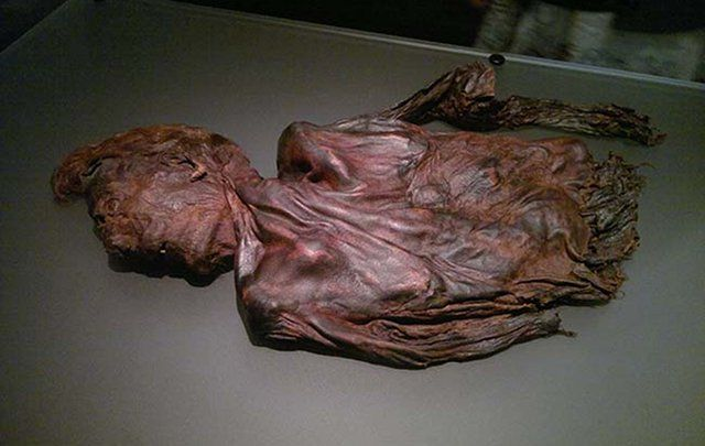 An expert has stated that the latest bog body found in Ireland has proven the belief that the Celts ritually sacrificed their kings to the Gods.