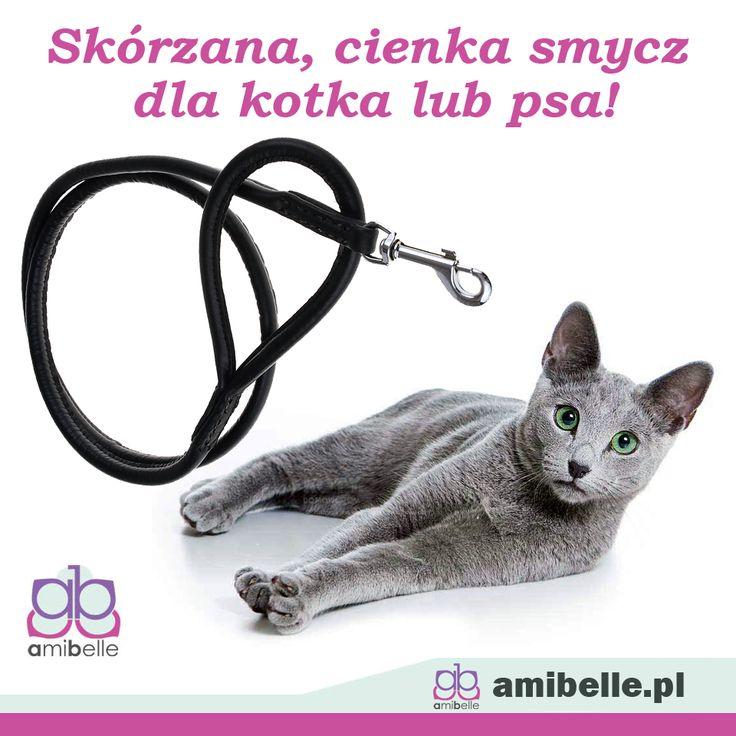 Chcielibyście wychodzić ze swoim kotkiem na spacery, jednak boicie się, że mógłby Wam uciec? Nie martwcie się! Wybierzcie stylową smyczkę z naturalnej skóry, która pasować będzie dla kotków i małych piesków!