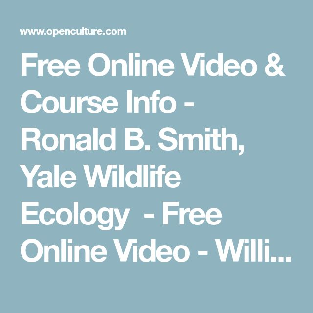 Free Online Video & Course Info- Ronald B. Smith, Yale Wildlife Ecology -Free Online Video- William Bean, UC Berkeley Woods Energy Seminar - Free Online Video- Multiple Professors, Stanford  Math Courses  A First Course in Linear Algebra - Free Online Video - N J Wildberger, UNSW Abstract Algebra - Free Course in Multiple Formats - Benedict Gross - Harvard Against All Odds: Inside Statistics-Free Online Video-Pardis Sabeti, Harvard Algebraic Topology: A Beginner's Course - Free…