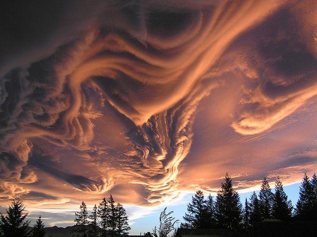 """最近になって現れる様になった「アスペラトゥス波状雲(Undulatus asperatus)」。2009年に英・雲評価学会(Cloud Appreciation Society) によって """"アスペラトゥス= 荒れた"""" と命名された気象現象ですが、アメリカ大気研究センターの専門家マーガレット・レモネ(Margaret LeMone) による30年間の観測の結果「新種の雲」になると考えられています。"""