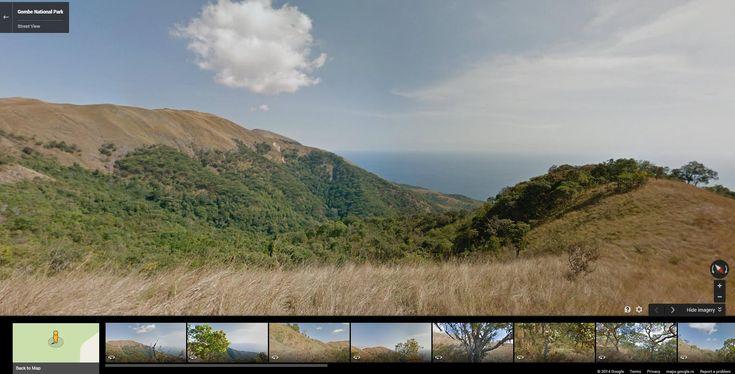 Google Street View Takes a Trip Among Jane Goodall's Chimpanzees