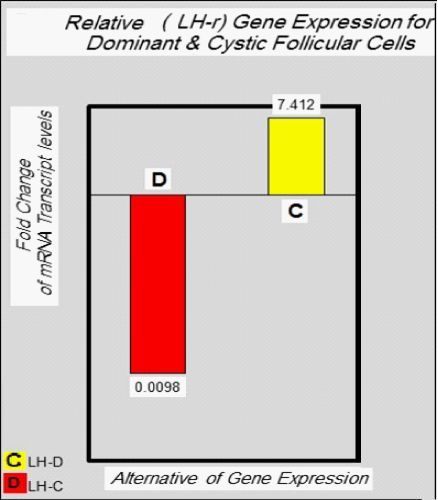 Identification of the Expression Level to LH-r Gene In dominant and Cystic Ovarian Follicles Cells of the Cows by Dhia Hussain Jassim